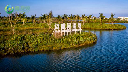 江东生态新名片 迈雅河区域生态修复项目一期完工